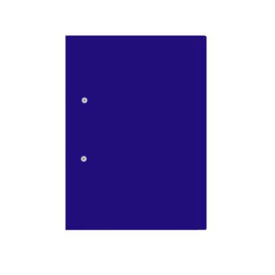 Accessable Files Purple Front